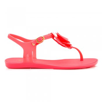 Mel Special 2 Flower Flat Summer Jelly Sandal - Black Flower, Pink Flower